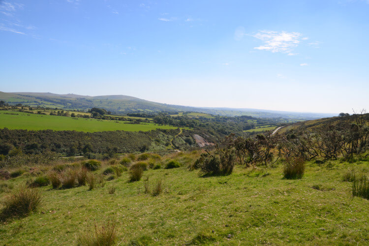 Dog-friendly Dartmoor