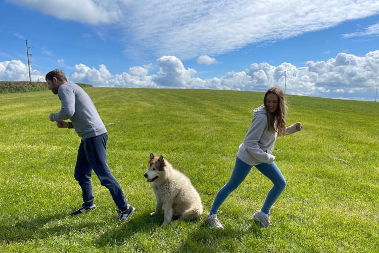 A young Alaskan Malamute sitting in a field surrounded by its two owners