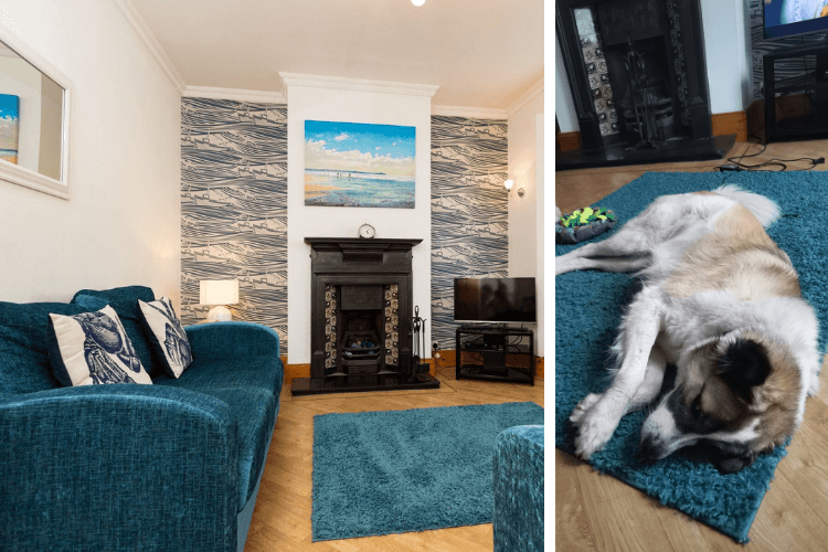 A vibrant lounging area - perfect for Barrie the dog to hang out in