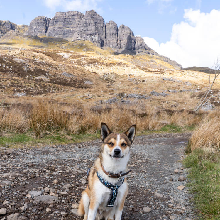 Talyn poses in front of the Old Man of Storr