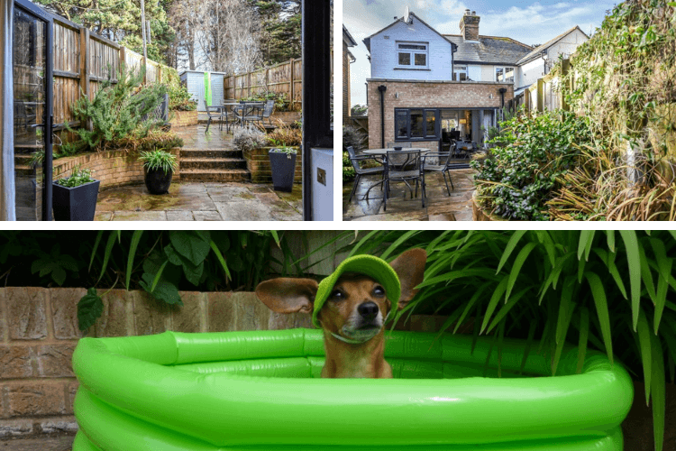 The garden and Daphne in her swimming pool