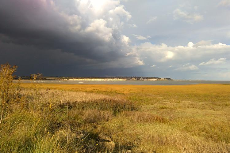 Sussex | Rye Harbour Nature Reserve