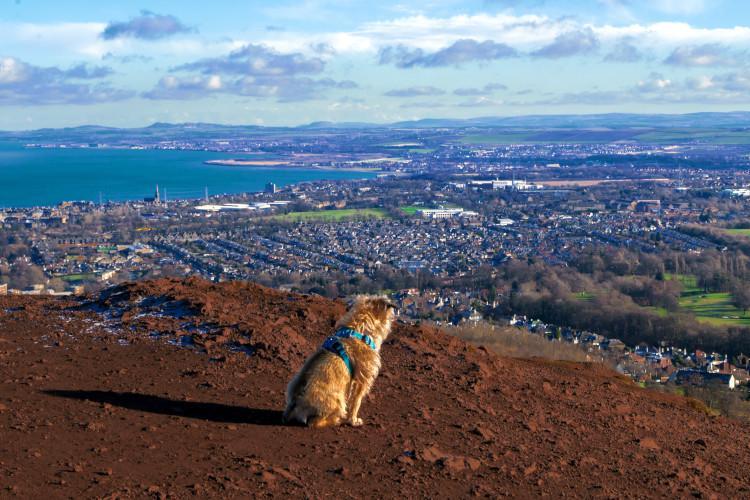 Edinburgh | Arthur's Seat