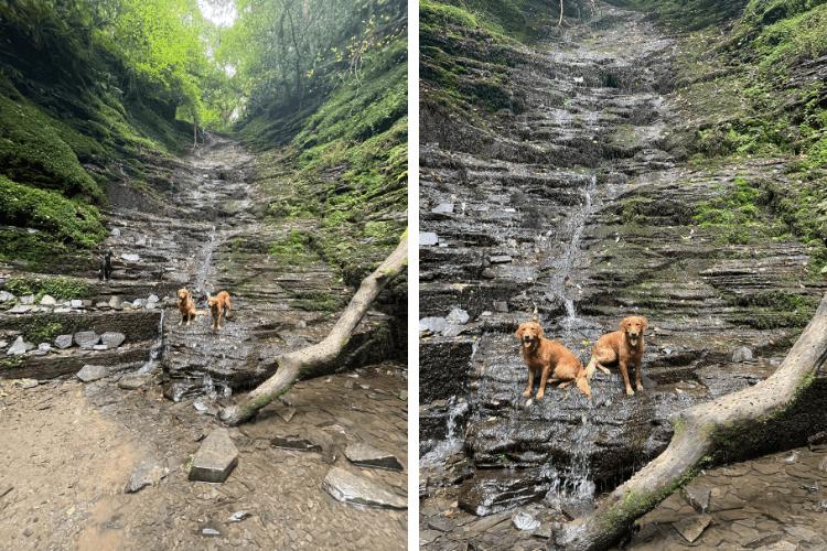 Fredrick and Royston at Water Break Its Neck waterfall