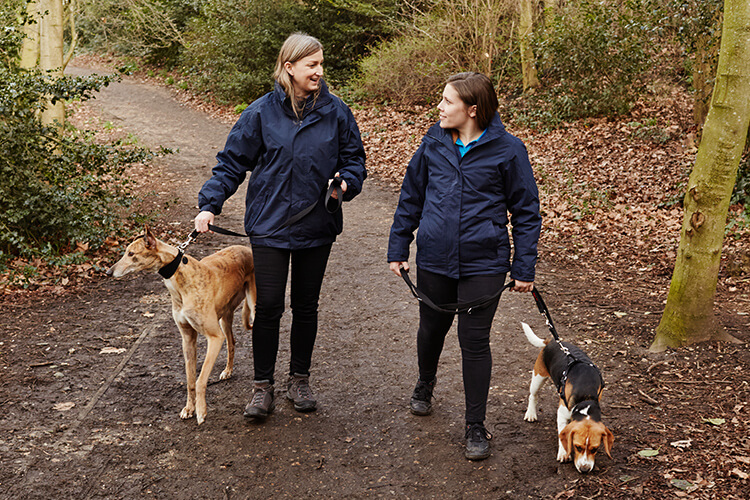 Two Battersea staff out with two dogs for a walk