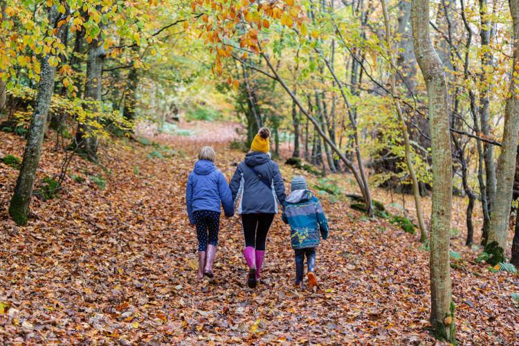Visit Scotland in Autumn