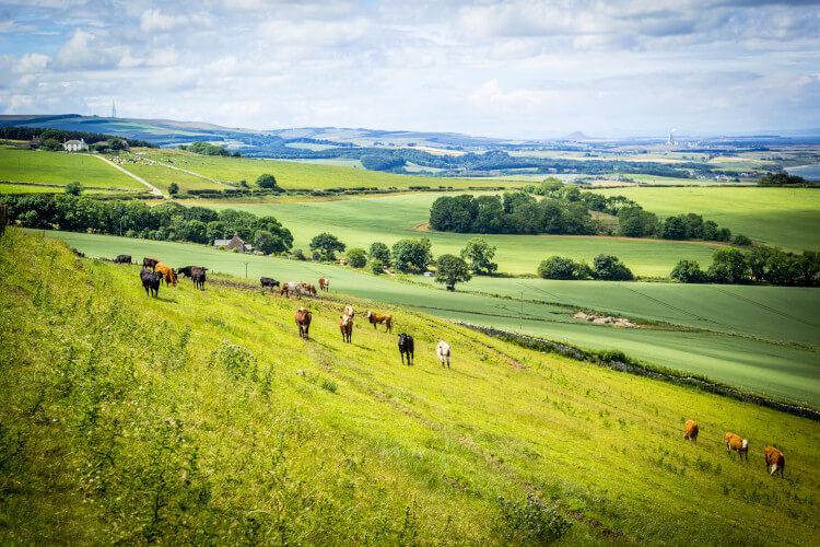 The Lothians in Scotland