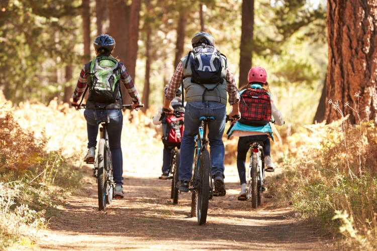 Go on a cycle with the family through Scottish woodlands