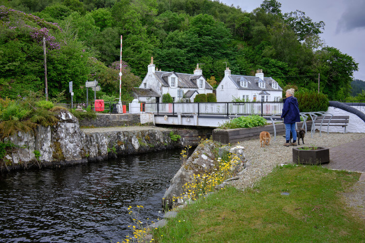 The Crinan Canal in Lochgilphead offers lovely dog walks