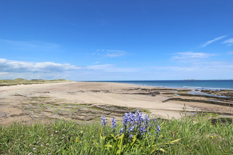 Bamburgh Beach on Northumberlands coast, looking from Seahouses