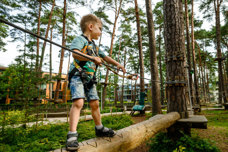 Take your kids to Go Ape, Northumberland, and let them climb in the trees