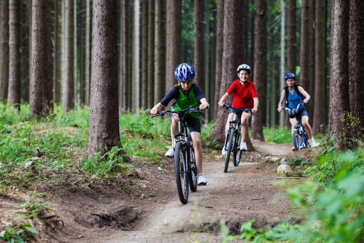Let your family feel free and cycle through the woods