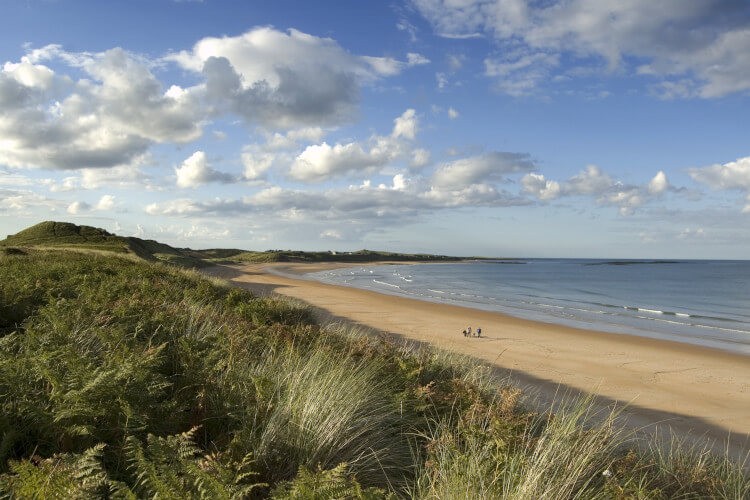 Embleton Bay is a gorgeous stretch of sand on the Northumberland coast