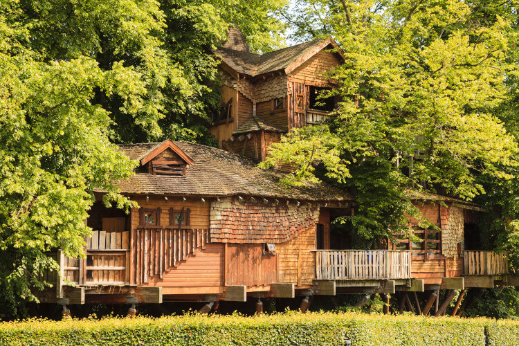 The Tree House in Alnwick gardens is a unique place to enjoy a nice meal out.
