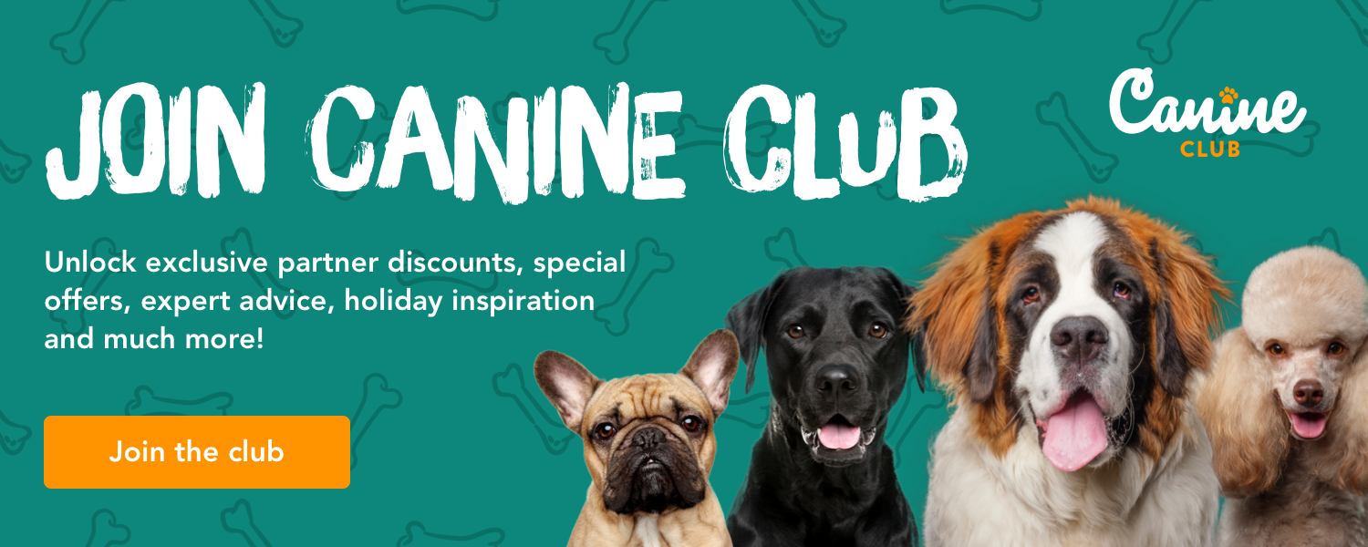 Join Canine Club