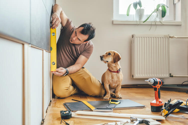 workman and dog