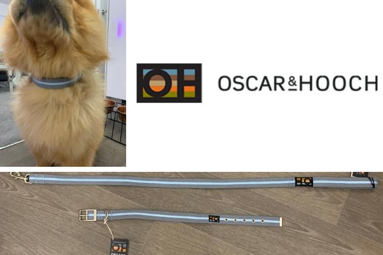 Oscar and Hooch Barney
