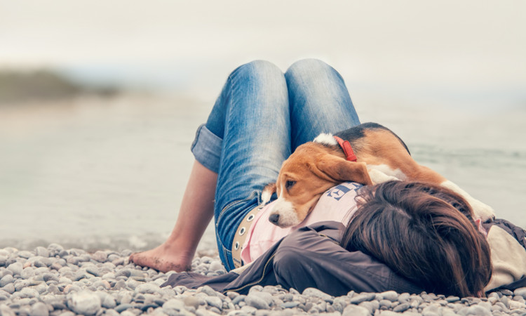 Dog and owner relaxing on beach