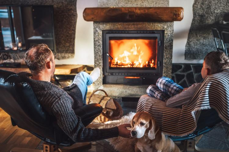 Dog and family in front of fire