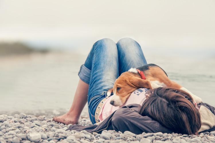 Girl and dog on pebbly beach