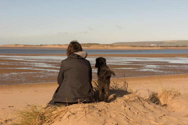 Instow beach is perfect for dogs and their owners