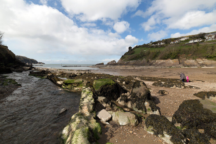 Combe Martin Beach for dogs