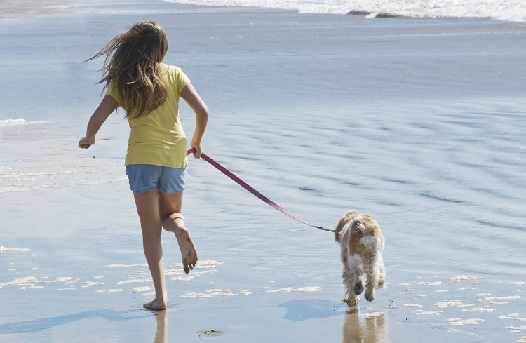 Girl running with a dog on the lead on a beach