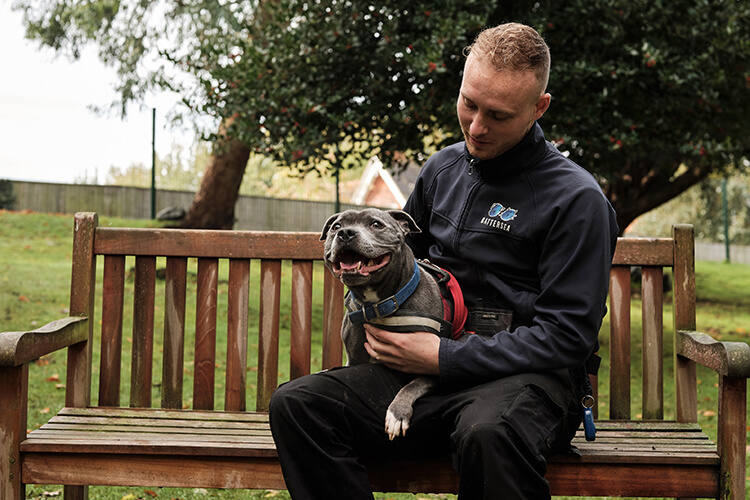 24 hours at Battersea Dogs & Cats Home