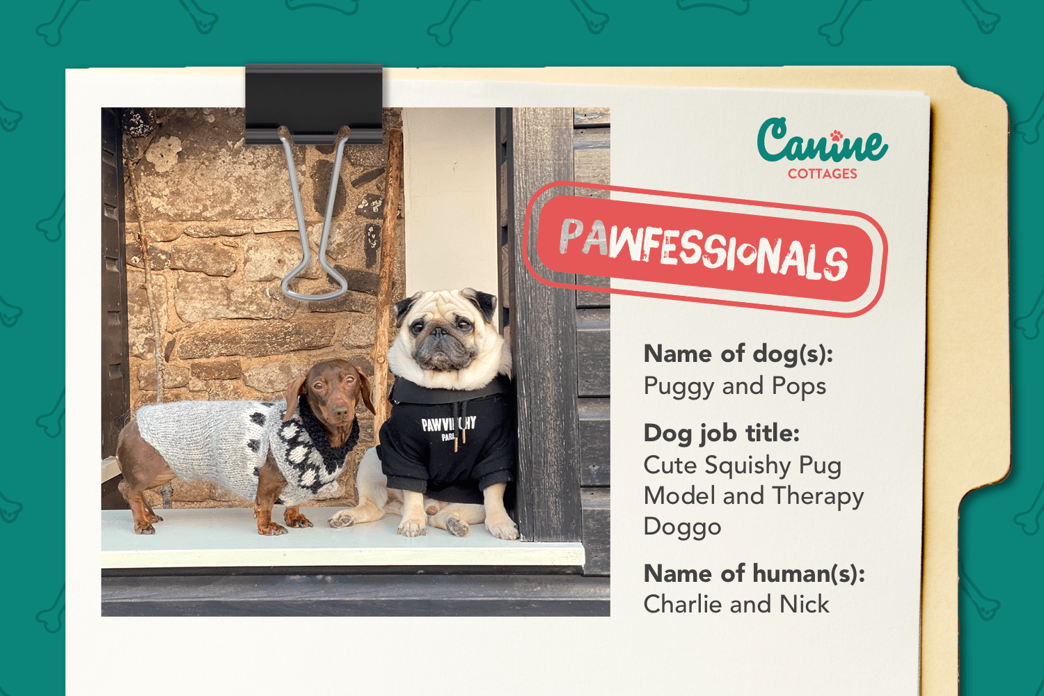 The Pawfessionals: A day in the life of Puggy and Pops