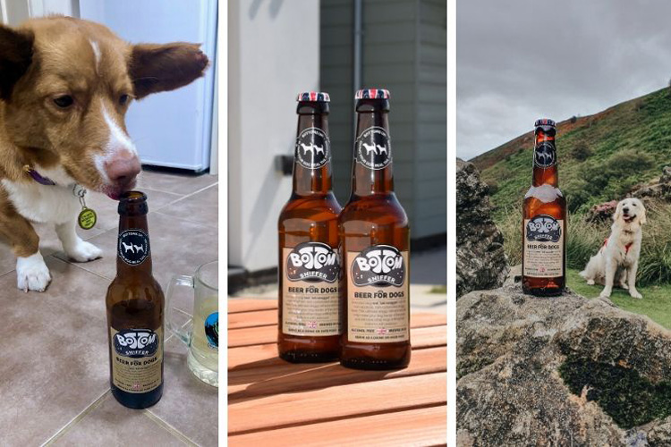 Woof & Brew dog-friendly beer: Canine Critics review