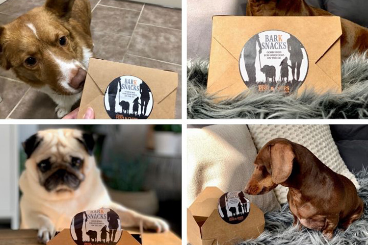 Bark Snacks' Doggie Fish & Chips: Canine Critic Review