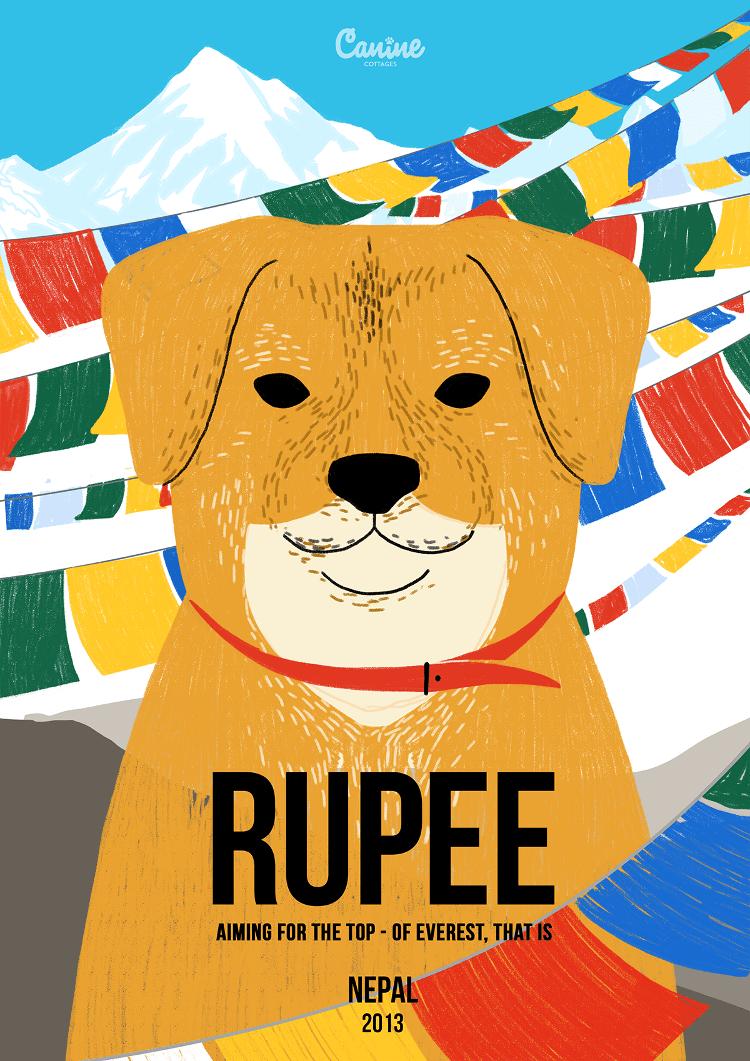 Rupee - Canine Pioneers