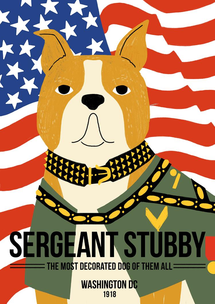 Sergeant Stubby - Canine Pioneers