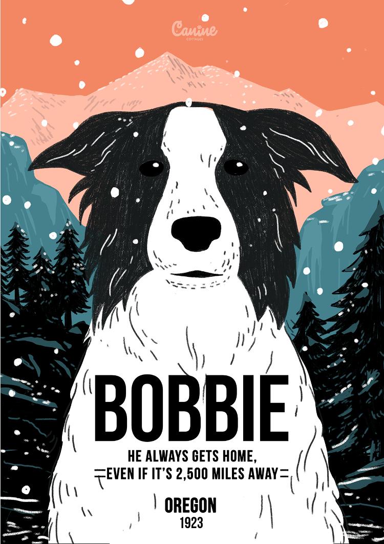 Bobbie - Canine Pioneers