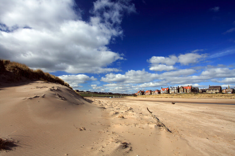 Alnmouth dog friendly beach in Northumberland