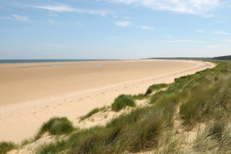 Holkham dog friendly beach in Norfolk