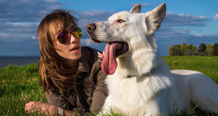 Dog with tongue out lying with their female owner on the grass