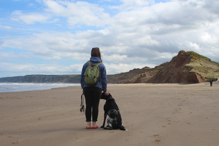 The Canine Guide to Filey