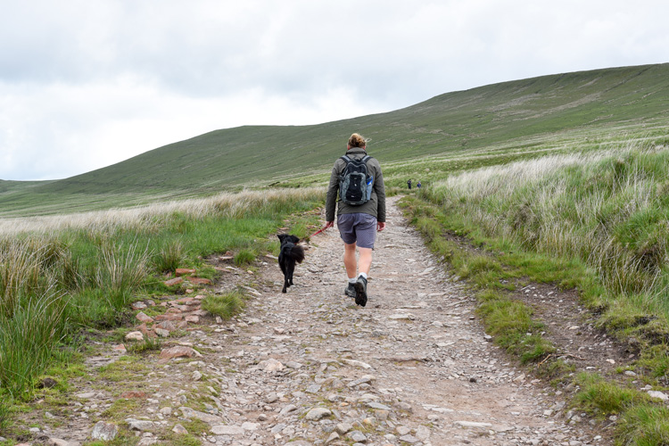 The Canine guide to the Brecon Beacons