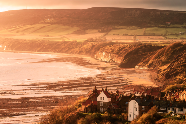 The Canine guide to Robin Hood's Bay