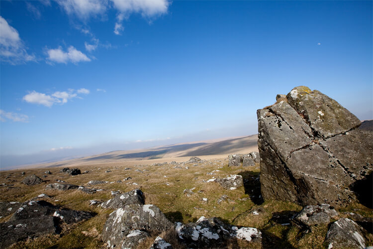 The Canine guide to Dartmoor
