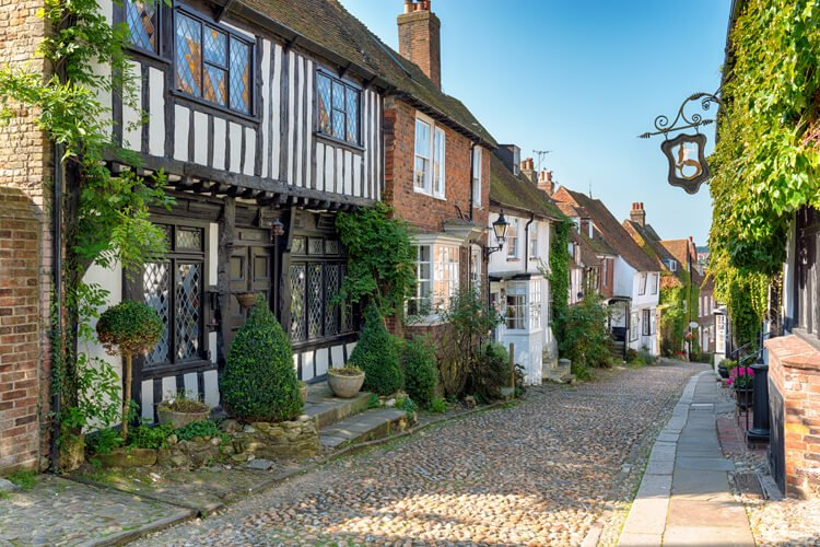 The Canine Guide to Rye