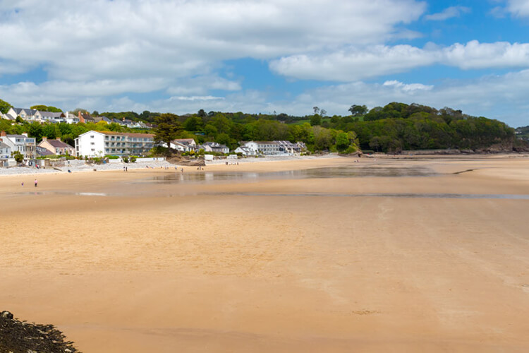 The Canine guide to Saundersfoot