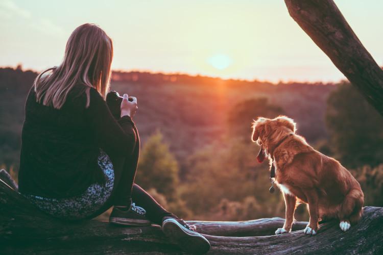 Woman and dog resting on dog walk