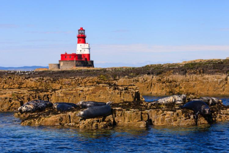 Longstone Lighthouse - Guide to the Farne Islands