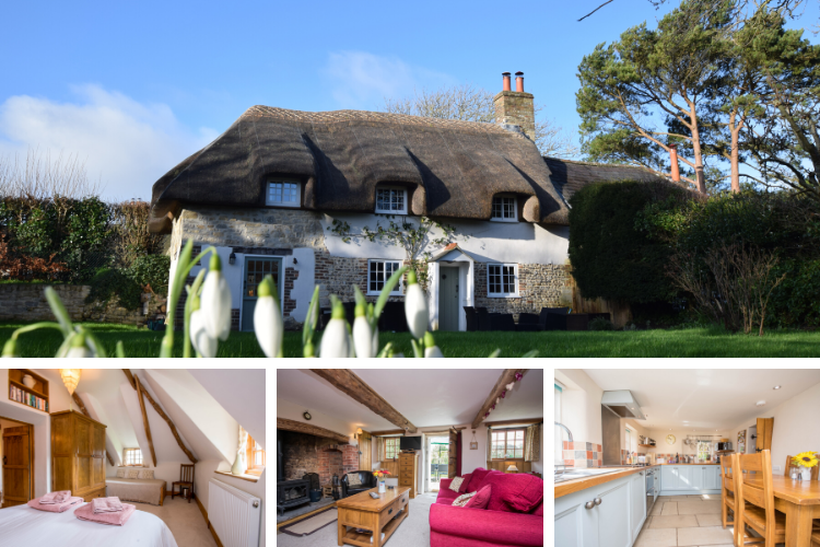 Apple Tree Cottage - East Chaldon