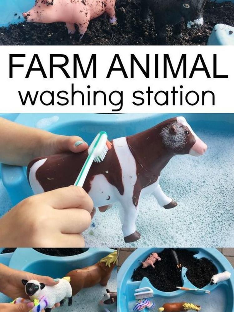 Farm animal washing station