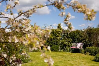 Foxglove Cottage - North York Moors