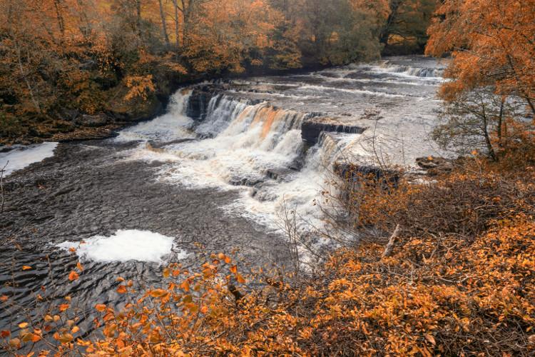 Visit Aysgarth Falls in the autumn