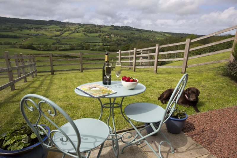 Enclosed gardens are important in dog-friendly cottages!